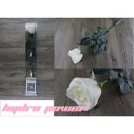 Hydro power flower flashligh / 水能發電電玫瑰花