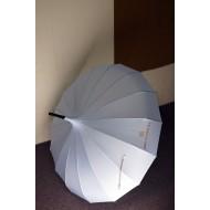 Brunomagli Umbrella /  Brunomagli 雨傘